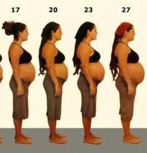 Беременность по неделям — развитие плода, основные этапы и сроки беременности (115 фото)